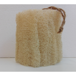 copy of Petit luffa ou loofah